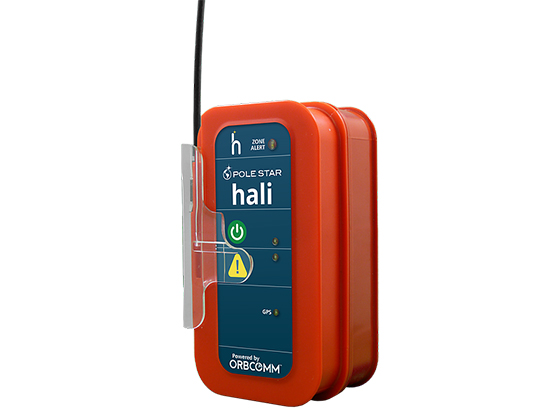 Image result for Hali vessel tracking